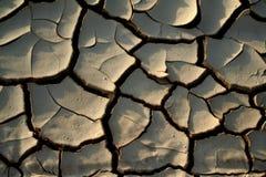 torka mud Arkivbilder