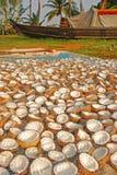 Torka och bearbeta kokosnöten royaltyfri foto