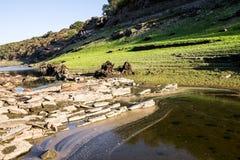 Torka på floden Arkivbild