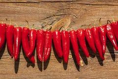 Torka peppar i solen royaltyfria bilder