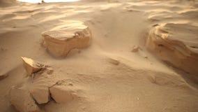 Torka sand i öknen lager videofilmer