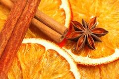 Torka skivor av apelsinen, kanel, kryddnejlikor och kardemumman Royaltyfri Fotografi