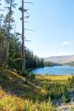 Torka slågna Sylvan Lake på Sylvan Pass på huvudvägen till den östliga ingången av den Yellowstone nationalparken i Wyoming USA a Royaltyfri Bild