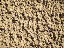 Torka smutsig jord texturerad bakgrund Royaltyfria Bilder