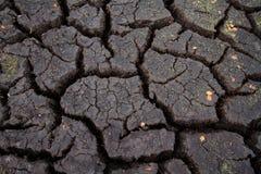 Torka: sprucken jord arkivbilder