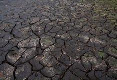 Torka: sprucken jord royaltyfria bilder