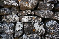 torka stenväggen Royaltyfri Fotografi