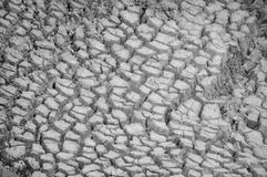 torka Torr jord, jordning Land smuts med sprickan mot bakgrund field blåa oklarheter för grön vitt wispy natursky för gräs Jordkl Arkivfoto