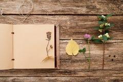 Torka upp växter i urklippsbok, lekmanna- lägenhet Arkivfoto