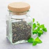 Torka växt- mintkaramellte i en glass krus med ny pepparmint på bakgrund, fyrkantigt format Royaltyfri Bild