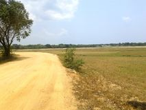 Torka zonen av Sri Lanka Arkivbild