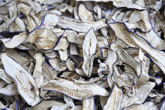 torkad aubergine Fotografering för Bildbyråer