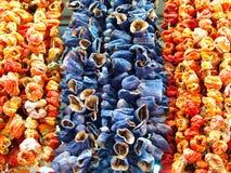 Torkad aubergine, peppar och spansk peppar royaltyfri fotografi