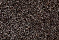 Torkad bakgrund för svart te Arkivbilder