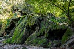 Torkad Beusnita vattenfall, Rumänien fotografering för bildbyråer