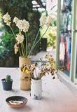 Torkad blomma i vas Arkivbilder