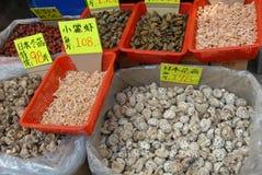 Torkad champinjoner och skaldjur Fotografering för Bildbyråer