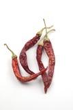 torkad chili arkivbilder