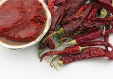 Torkad chilipeppar och tomatdeg Royaltyfria Foton