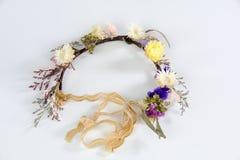 Torkad cirkel för blommahuvud Royaltyfria Foton