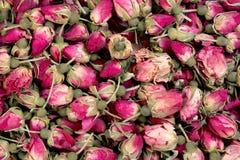 Torkad closeup för rosebudsbakgrundstextur Royaltyfria Foton