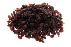 torkad cranberry royaltyfri foto