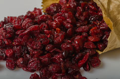 torkad cranberry Royaltyfria Foton