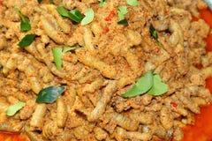 Torkad curry för fishâsfiskromkokosnöt arkivbild