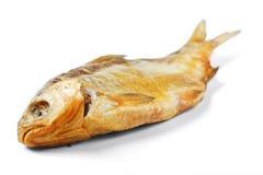 torkad fisk Royaltyfri Foto