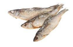 Torkad fisk Arkivfoto