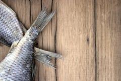 torkad fisk Arkivbild