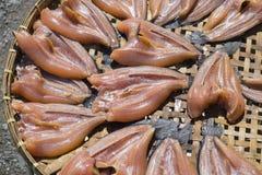 Torkad fisk i en korg Arkivbilder