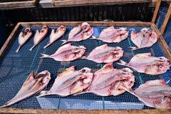 Torkad fisk i Japan Royaltyfri Foto