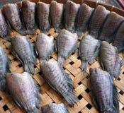 Torkad fisk, i Thailand royaltyfri fotografi