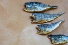 Torkad fisk - läckert mellanmål med öl royaltyfri bild