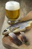 Torkad fisk och öl Royaltyfri Foto
