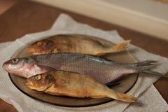Torkad fisk på tabellen ölmellanmål till Royaltyfri Foto