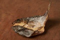 Torkad fisk på tabellen ölmellanmål till Fotografering för Bildbyråer