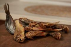 Torkad fisk på tabellen ölmellanmål till Royaltyfri Bild