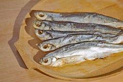 torkad fisk Sabrefish royaltyfri bild
