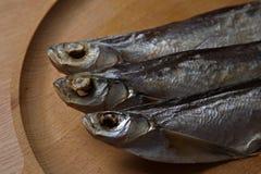 torkad fisk Sabrefish fotografering för bildbyråer
