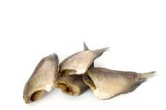 Torkad fisk, thai mat som isoleras på vit arkivfoton