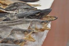 torkad fiskmarknad Arkivfoton