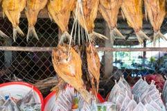 torkad fiskmarknad Royaltyfri Fotografi