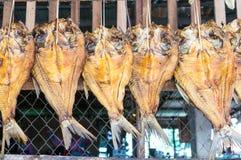 torkad fiskmarknad Royaltyfri Bild