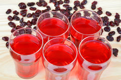 torkad fruktsaft för cranberries cranberry arkivfoto