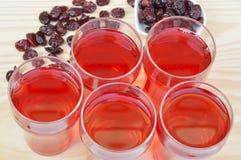 torkad fruktsaft för cranberries cranberry arkivfoton