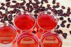 torkad fruktsaft för cranberries cranberry arkivbilder
