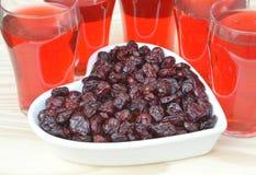 torkad fruktsaft för cranberries cranberry royaltyfri foto