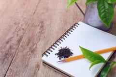 Torkad grön teblad och blyertspenna på anteckningsboken Royaltyfri Fotografi